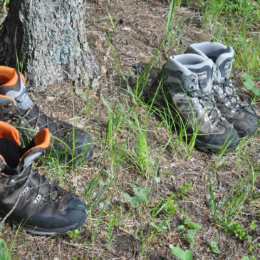 Choosing the Right Pair of Shoes for your Adventure